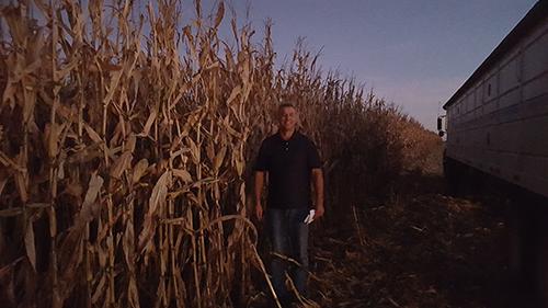 Larry With Corn Ca1b47b2